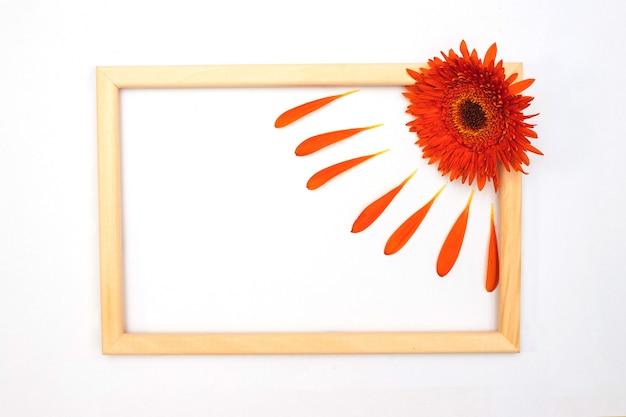 ガーベラの花のロマンチックな構成。オレンジ色の花と白い背景の上のフォトフレーム。バレンタインデー、イースター、誕生日、幸せな女性の日、母の日。上面図。