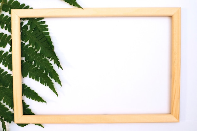 녹색 잎의 낭만적인 구성입니다. 녹색 고사리 잎과 흰색 배경에 사진 프레임. 발렌타인 데이, 부활절, 생일, 행복한 여성의 날, 어머니의 날. 평면도.