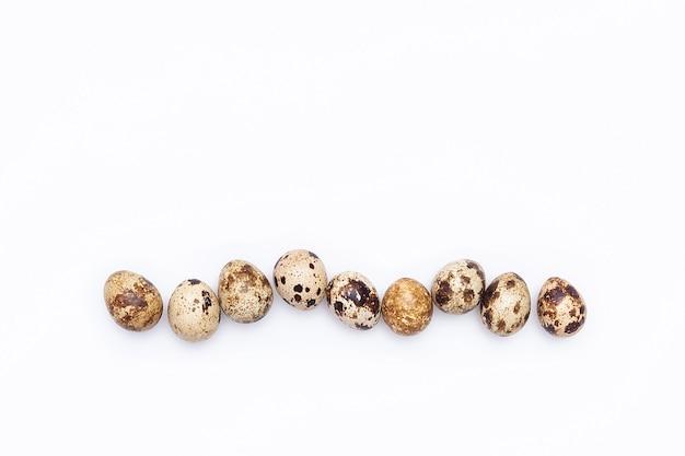 白い背景の上のウズラの卵の列。上面図フラットレイ