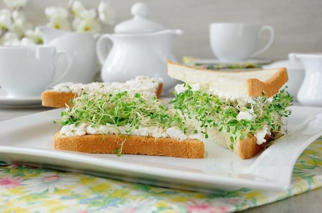 부드러운 리코타와 커피 또는 차 한 잔을 곁들인 샌드위치 새싹 알팔파 새싹