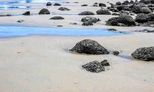 거친 돌이 가득한 모래 해변
