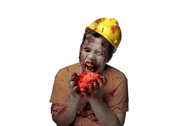 彼の体に血と傷を持つ恐ろしいゾンビは、白い背景の上に分離された生の脳を食べる