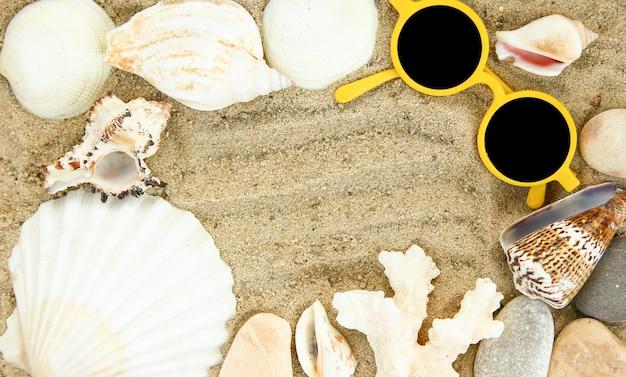 Ракушки на фоне песка