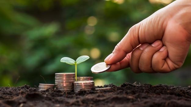 コインの山の上に生えている苗木と、木にコインを与えている手、お金を節約し、経済的に成長するためのアイデア。