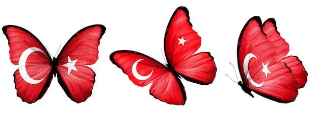 Набор бабочек с флагом турции на крыльях изолированно на белом фоне. фото высокого качества