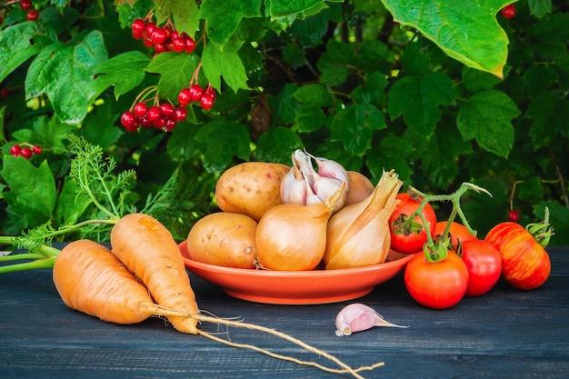 Набор овощей на столе перед приготовлением борща или салата, сложенный после сбора урожая. идея для диеты