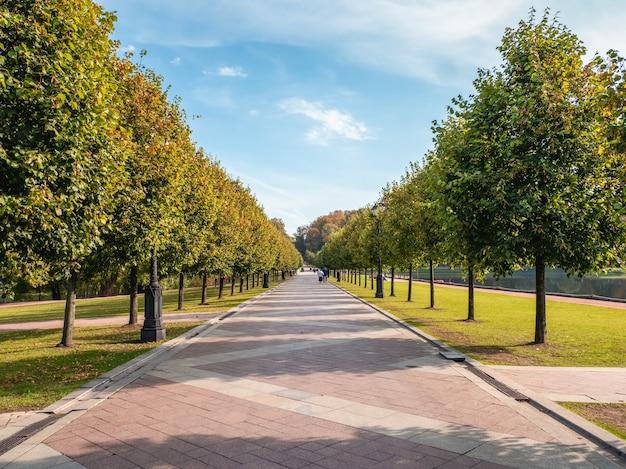 여름 공원의 그늘진 골목. tsaritsyno. 모스크바.