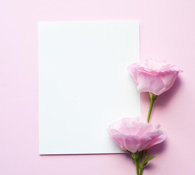紙のシートは、トルコギキョウの花ピンクの紙の上に水平に横たわっています