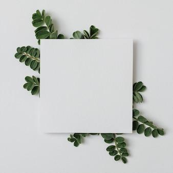 あなたの広告テキストとソーシャルネットワークの広告のための灰色の背景に緑の葉が付いた一枚の紙-植物相で飾られたコピースペースのあるバナー-最小限の平らな灰色の背景