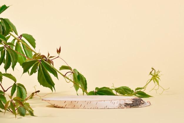 Витрина из натурального дерева березы и плюща. подиум для презентации товаров и косметики выполнен из дерева на бежевом фоне. минималистичная сцена брендинга.