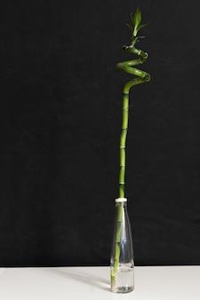 シンプルなミニマリストスタイルで、自宅の棚に水を入れたガラス瓶に竹を紡ぎました。