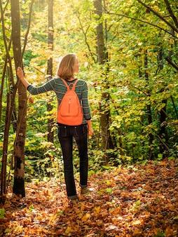 日当たりの良い秋の森にピンクのバックパックを背負ったほっそりした女性観光客は、天気と生活を楽しんでいます。旅行のコンセプト。垂直方向のビュー。