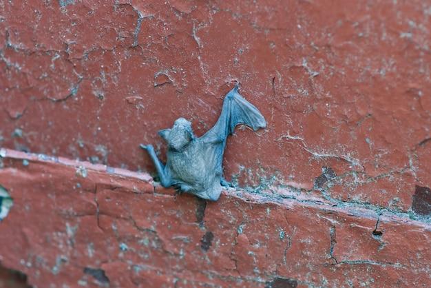 둥지에서 나무에 작은 아기 박쥐