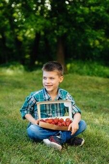 小さなかわいい男の子がイチゴの大きな箱を持っています