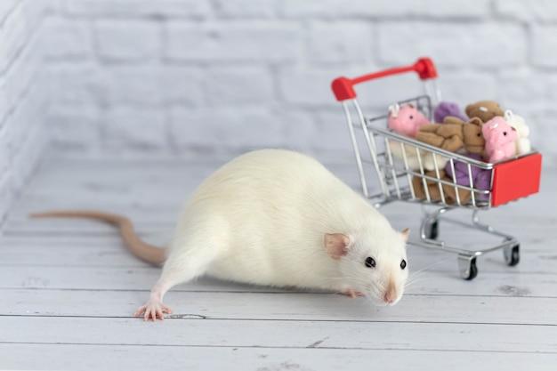 食料品のカートの横にある小さなかわいい白いネズミは、色とりどりのテディベアでいっぱいです。市場での買い物。誕生日や休日のプレゼントを買う。