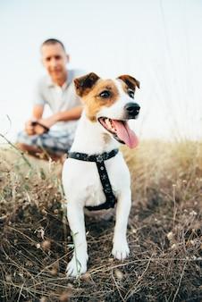 주인과 함께 산책하는 잭 러셀 테리어 품종의 작은 개