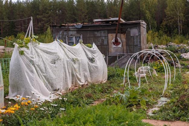 庭のきゅうり用の小さな温室。苗木がスパンボンドで覆われた野菜パッチは、湿度を保ち、庭の地面の霜を防ぎます。