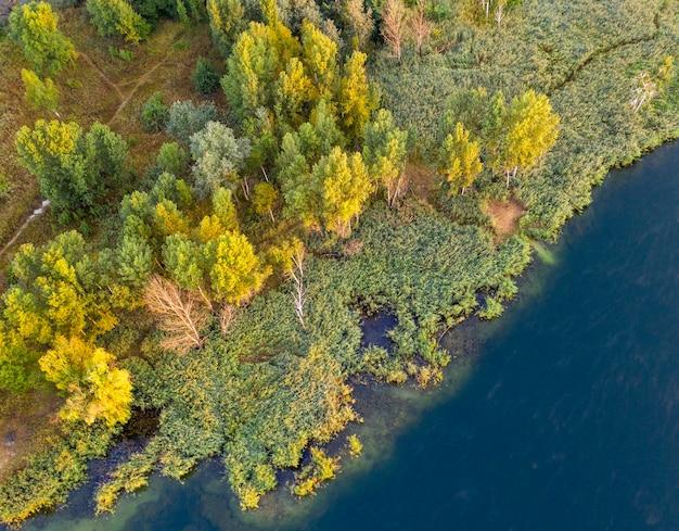 Небольшой островок посреди озера, желтые осенние листья на деревьях. вид с дрона.