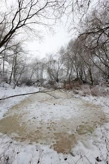 Небольшое озеро или болото в лесу зимой, озеро покрыто толстым желтым льдом из замерзшей воды, зимней природы и мороза