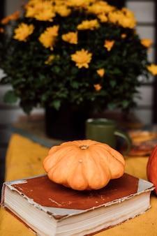 Маленькая оранжевая тыква лежит рядом с книгой и зеленой чашкой