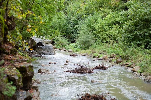Речка осенью загрязняется ответвлениями