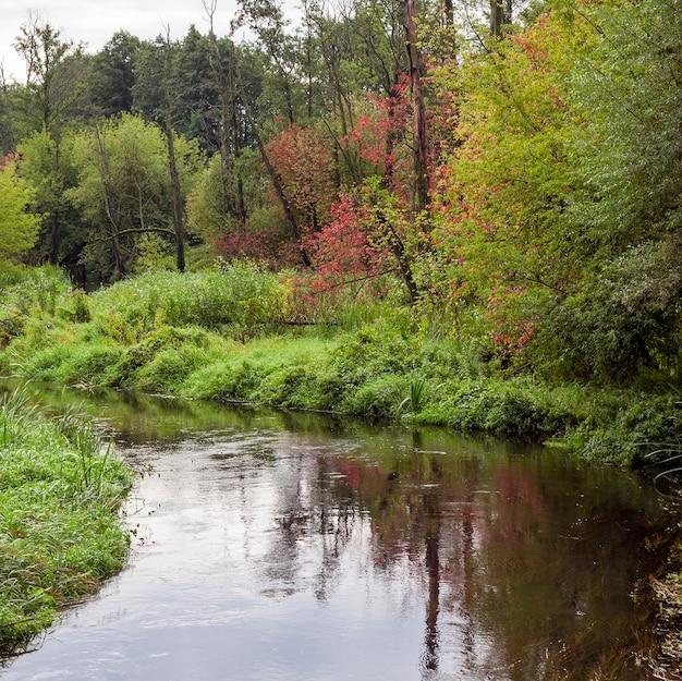 秋の小さな川、いくつかの木が葉の色、風景を変え始めました
