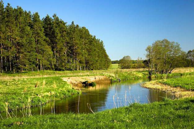 여름에 작은 강. 벨라루스