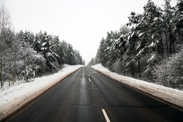 冬の小さな道。冬。追跡。