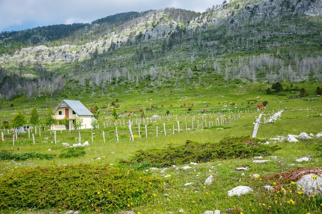 小さな村は多くの丘や山に囲まれています。