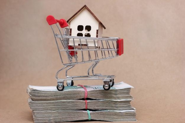 スーパーマーケットのカートにある小さな木造の家で、10万枚目のロシアルーブルのノートが束ねられています。不動産を購入するというアイデア。大きな購入