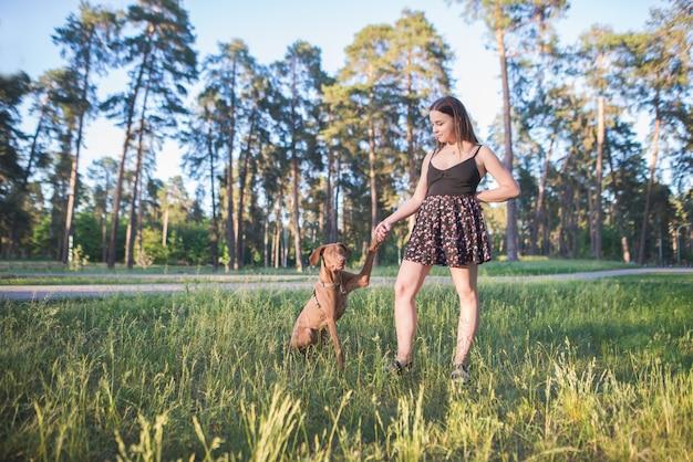 笑顔の女性と公園で賢い美しい犬