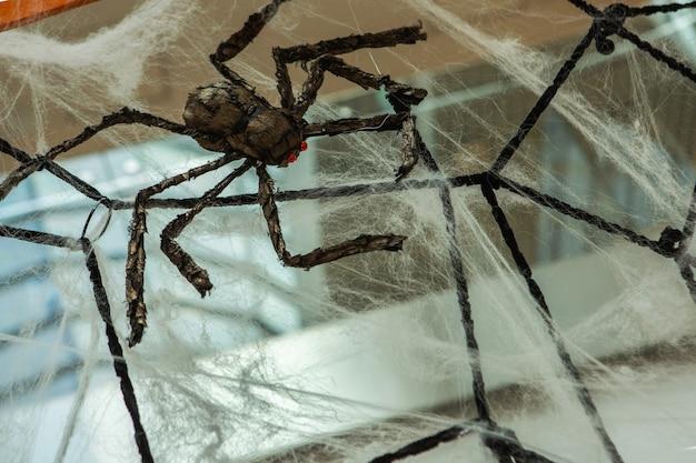 Вид сбоку паука, с которого свисает паутина