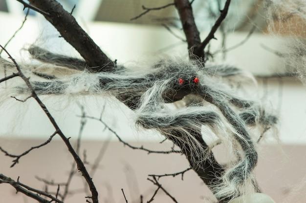 蜘蛛の巣がぶら下がっている木の枝の蜘蛛の側面図