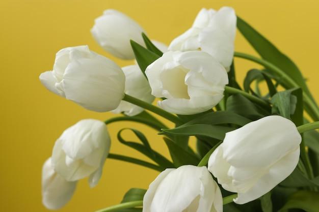 黄色の背景に新鮮な白いチューリップの春の花束