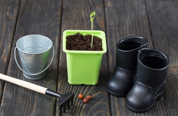 植木鉢の発芽種子バケツブーツと熊手