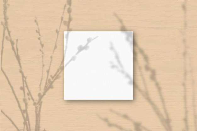 Квадратный лист белой текстурированной бумаги на оранжевом фоне стены. наложение мокапа с тенями растений. естественный свет отбрасывает тени от веток ивы. плоская планировка, вид сверху. горизонтальная ориентация