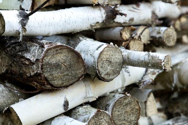 列に横たわっている白樺の木のスタック