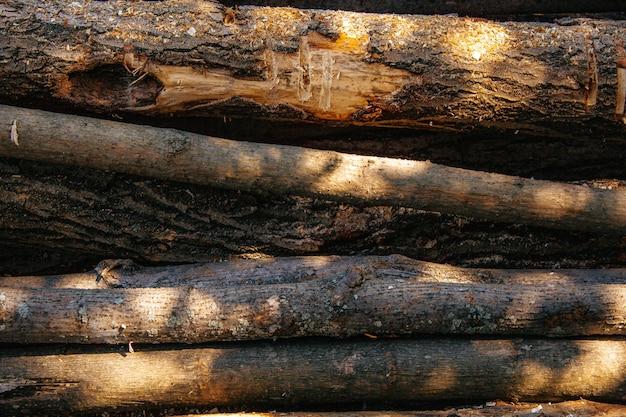 На заднем плане стопка распиленных бревен. лесозаготовительная промышленность. деревянные бревна
