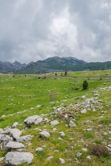 曇りの山々に囲まれた石の多い緑の牧草地。