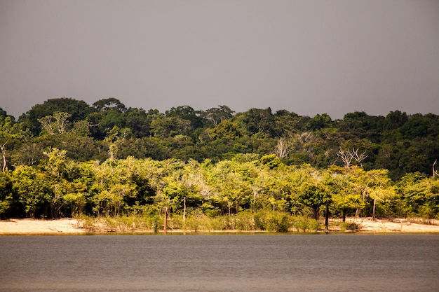 アマゾン川の島に来る嵐