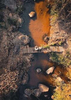 熱帯林の岩のある小川、上から