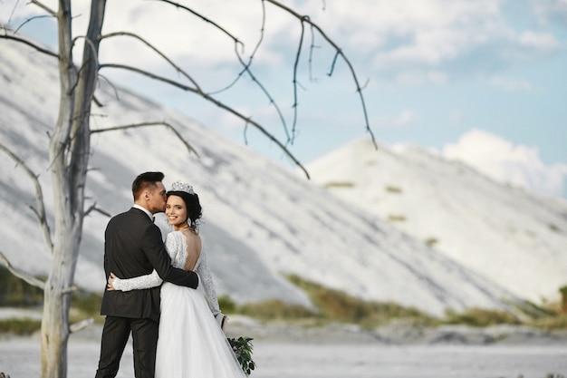 아름다운 풍경을 야외에서 포옹과 키스 신혼 부부의 세련된 커플