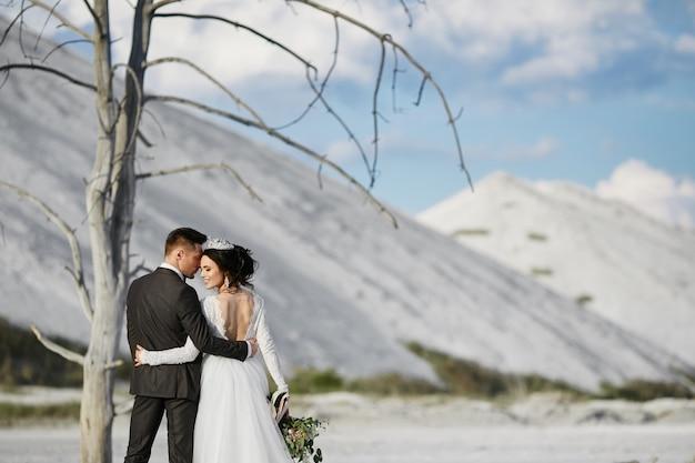 화이트 마운틴 근처 야외에서 서서 포옹 결혼식 복장에 세련 된 젊은 남자와 젊은 여자