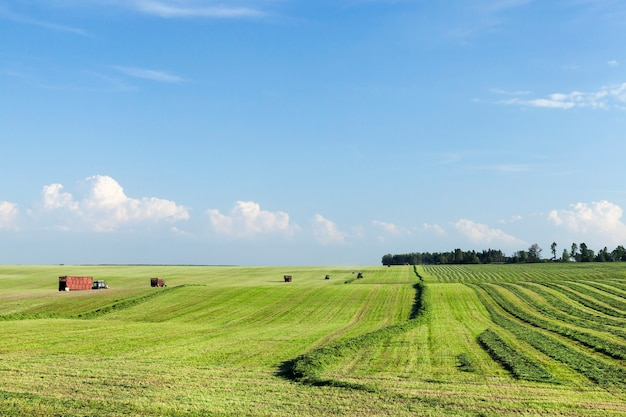 Летний пейзаж с сельскохозяйственной техникой и полем, на котором скашивают траву для заготовки кормов для скота.