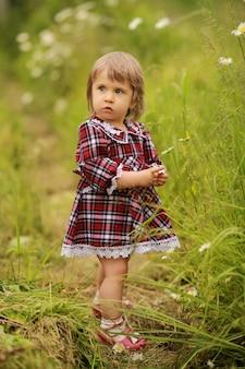 Удивленная маленькая девочка в бордовом платье в клетку собирает цветы ромашки