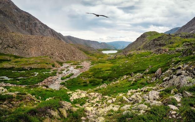 湿地の山の谷、小川のある劇的な雨の風景、そして緑豊かな山々に囲まれた峡谷の岩だらけの小道。アルタイ山脈。