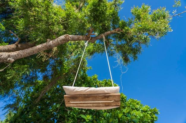Качели на веревке висят на тропическом дереве на пляже острова занзибар, танзания, восточная африка. вид снизу, крупный план