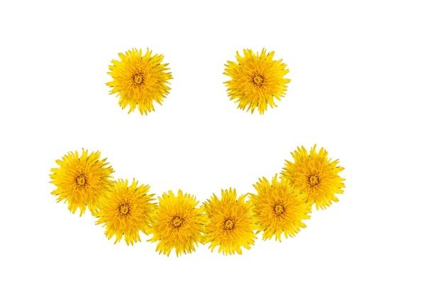 Символ счастья, веселья, радости, лета - глаза и улыбка из ярко-желтых цветов одуванчиков, изолированных на белом фоне, крупным планом. можно использовать как открытку, счастливый летний фон