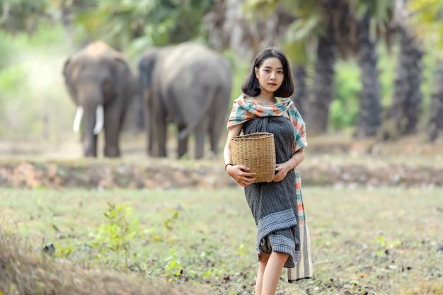 タイの伝統的な服を着たタイ人女性が、田んぼで象を装ってポーズをとります。