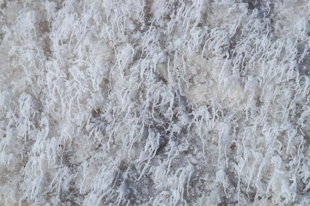 村の乾燥した塩湖の岸に地殻を形成する白い塩の結晶の薄層